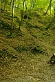 Kazimierz -wąwóz - panoramio.jpg