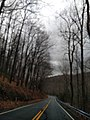 Knob Run Road - panoramio (5).jpg