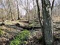 Knueppeldamm Grabenquelle 2010-04-07 009.jpg