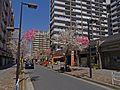 Komatsugawa 3-Chome River West Senbonzakura Arcade.jpg