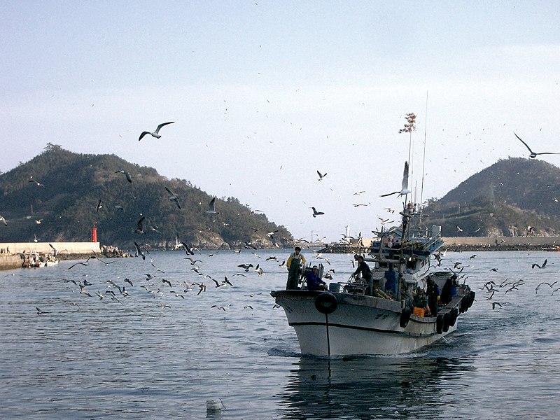 File:Korea-Haenam-01-var-01.jpg