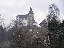 Kriens Schloss Schauensee.JPG