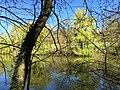 L'étang du parc zoologique de Moidière (Isère).JPG