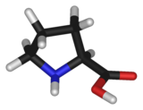 Ball-and-stick model of the proline molecule