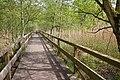 LSG und Feuchtgebiet internationaler Bedeutung Steinhuder Meer am Nordostufer IMG 6910.jpg