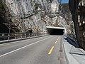 La Roche Saint-Jean-Brücke (Süd) über die Birs, Choindez JU 20190402-jag9889.jpg