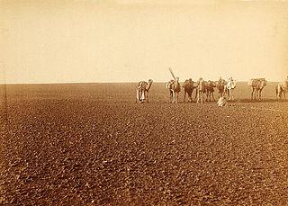desert landscape with mostly rock instead of sand