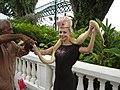 Lady with Snake Singapore - panoramio.jpg
