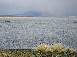 Nevado Tres Cruces National Park - Image: Laguna Santa Rosa, Nevado Tres Cruces National Park