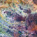 Landsat art Ghadamis.jpg