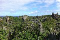 Landscape, Niue, 2011. Photo- Kye Taylor - DFAT (13253217684).jpg