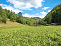 Landscape of Bjelusa - 7408.CR11.jpg