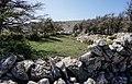 Landschaft auf dem Wanderweg zum Obzova (569 m), Crikvenica in Kroatien.jpg
