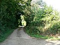 Lane by Westcot House Farm - geograph.org.uk - 246085.jpg