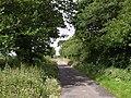Lane past Whiddon Moor - geograph.org.uk - 491519.jpg