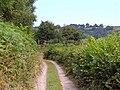 Lane to Alltgydd Fawr - geograph.org.uk - 898295.jpg