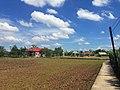 Lang que,Long Trach,Can duoc,Longan, Vietnam - panoramio.jpg