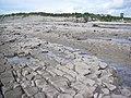 Lavernock Point - looking landward at low water - geograph.org.uk - 1470796.jpg