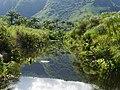 Le canal du Moulin au coeur de la Réserve Naturelle Nationale de l'Etang Saint-Paul.jpg