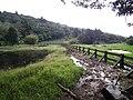 Lengshuikeng Eco Pond 冷水坑生態池 - panoramio.jpg
