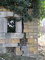 Lierre grimpant dans murs fort de Vaise.JPG