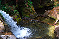 Liffey falls - upper section - tasmania.jpg
