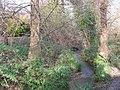 Lilley Brook near Cox's Meadow - geograph.org.uk - 1134125.jpg