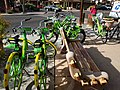 Lime and GRiD Bikes (40217945711).jpg