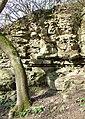 Limestone Exposure near Munslow, Shropshire - geograph.org.uk - 676613.jpg