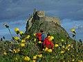 Lindisfarne Castle - geograph.org.uk - 1082415.jpg