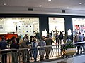Line at the opening of first Apple Store in America.jpg