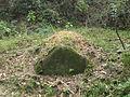 Lingshan Islamic Cemetery - tomb - DSCF8387.JPG