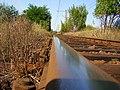 Linia kolejowa (kierunek Trzebież) - panoramio.jpg