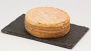 Livarot cheese French cheese of the Normandy region