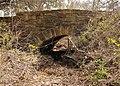 Lockhart state park vehicle bridge.jpg