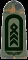 Luftwaffe-171-Oberstabsfeldwebel.png
