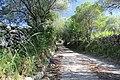 Luogosanto - Strada medievale (03).JPG