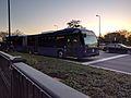 Lynx Bus 131-613 (29599673023).jpg