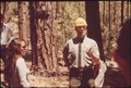 MEMBERS OF THE SOUTH PINE ASSOCIATION TAKE A TOUR OF A FOREST MANAGEMENT AREA - NARA - 543999.tif