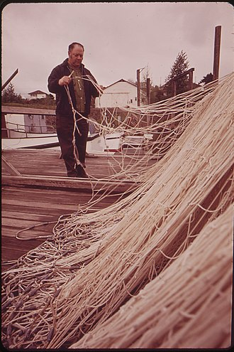 Gillnetting - A fisherman repairs a gillnet (April 1973, St. Helens, Oregon)
