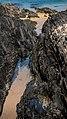 MICRO LADSCAPE (10).jpg