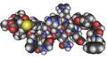 MMDB ID 12437 PDB ID 1CQ0 Structure Of A Human Hypocretin-2 OREXIN- B.png