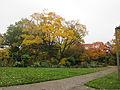 MSU 2014 Botanical Garden K.jpg