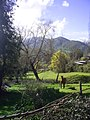 Machali, Cerro San Juan. - panoramio.jpg