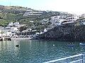 Madeira - Camara De Lobos (4659969825).jpg