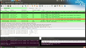 File:Making http requests with telnet and observing with wireshark.webm