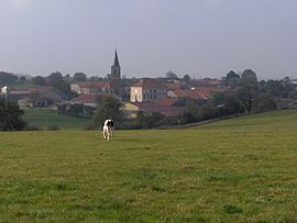 A general view of Mandres-en-Barrois