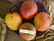 Mango BaileysMarvel Asit fs8.jpg
