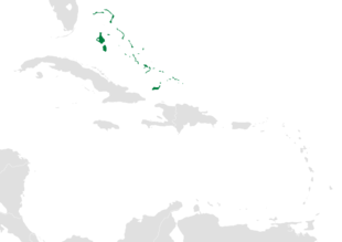 Map of the Caribbean-Lucayan Archipelago.png