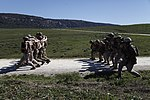 Marines Conduct Trilateral Training during Lisa Azul 150309-M-XZ244-135.jpg